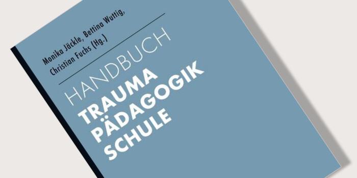 Buchvorstellung Handbuch Trauma Pädagogik Schule Traumahilfe